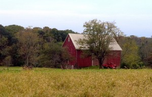 Bucks county farmscape